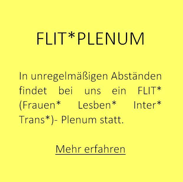 http://www.bagru-soziologie.at/flit-plenum/